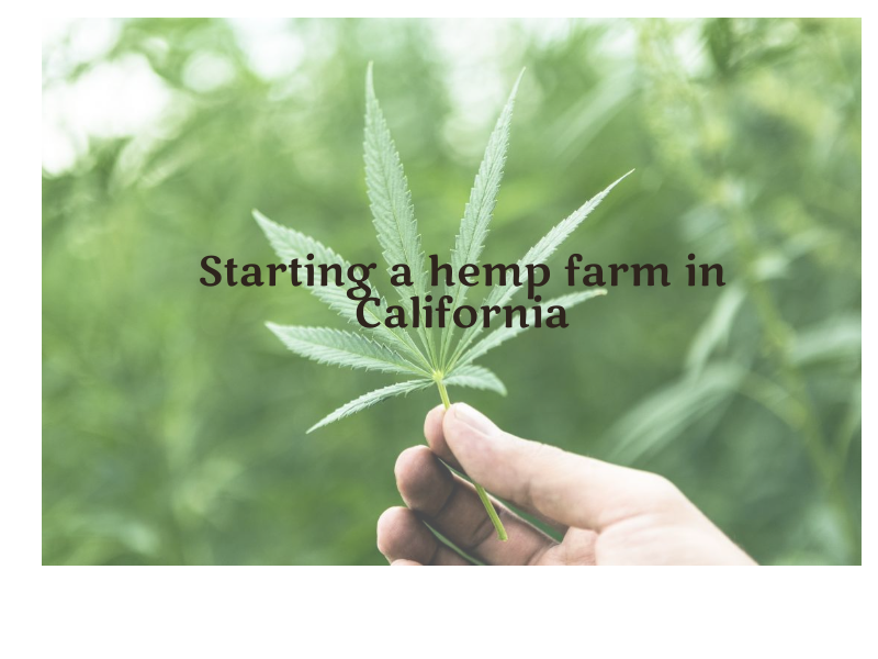 Starting a hemp farm in California